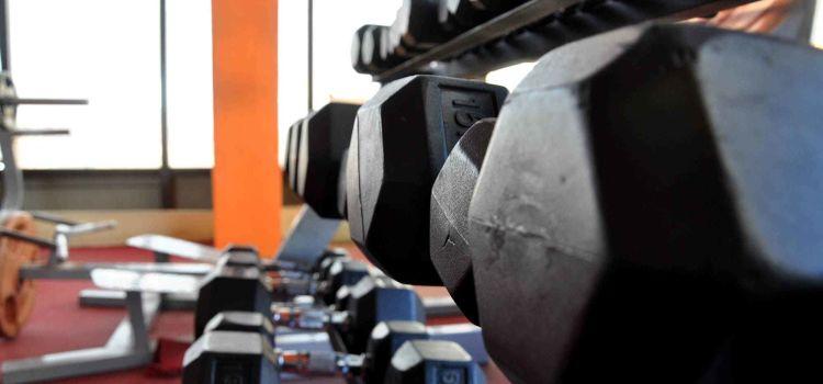 Muscle Concept Gym-Begur-150_cxtidm.jpg