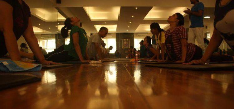 Bharat Thakur Artistic Yoga-696_zdslsm.jpg