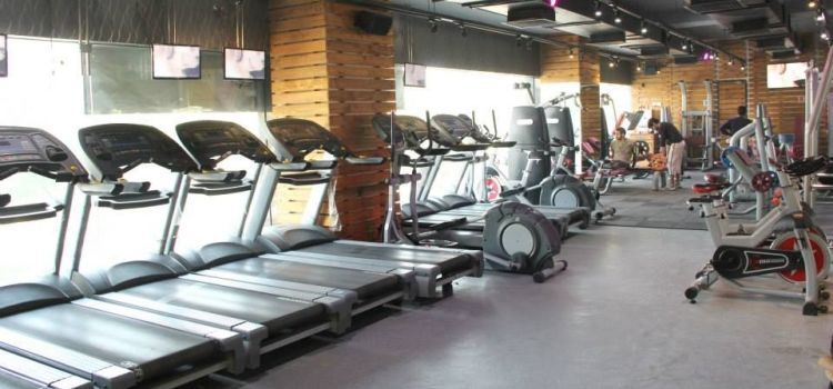 The Gym Health Planet-Gurgaon Sector 14-2901_qb3uej.jpg