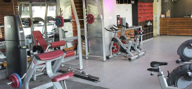 The Gym Health Planet-Gurgaon Sector 14-2904_hoff7d.jpg