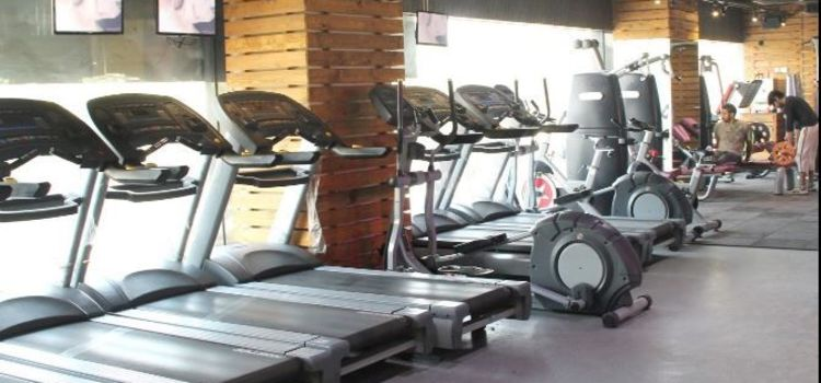 The Gym Health Planet-Gurgaon Sector 14-2906_hhixik.jpg