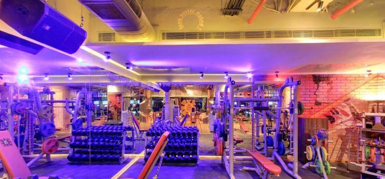 The Gym Club-Gurgaon Sector 49-4028_o67hqd.jpg