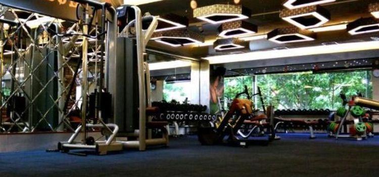 Ozi Gym & Spa-Sector 40-5603_ytaqax.jpg
