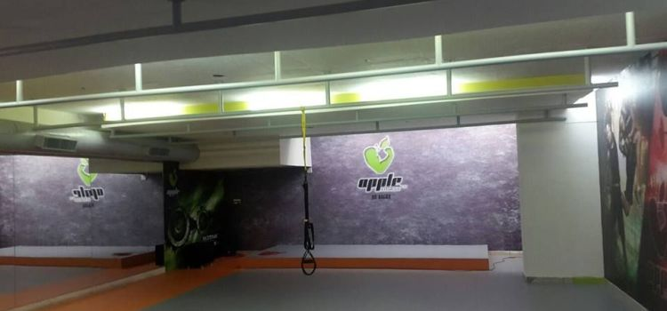 Apple Fitness-Rajarajeshwarinagar-6584_dipad6.jpg