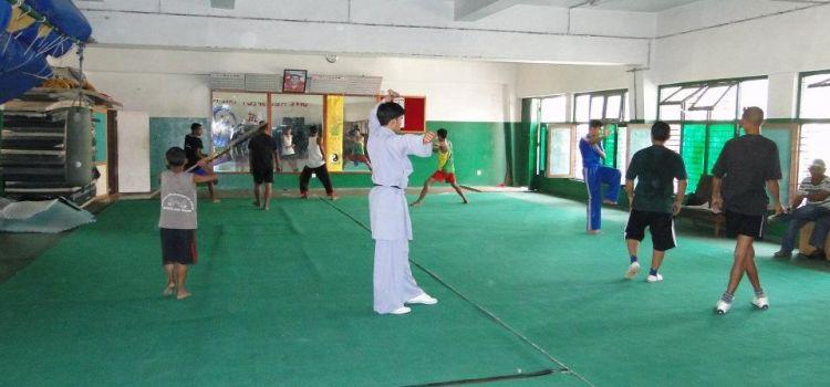 Wushu KungFu Federation of India-Chandkheda-6732_gkqdw2.jpg