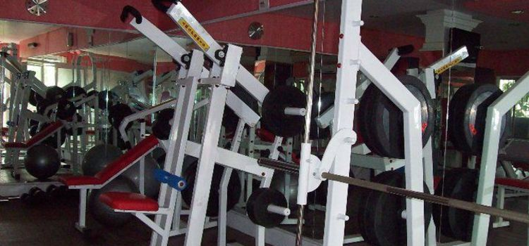 Physiomax  Gym-Dum Dum-6886_jywcpy.jpg