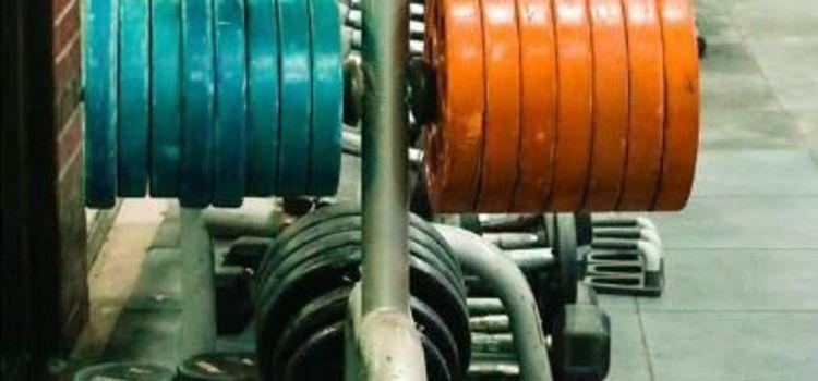 Steel Gym-Sector 16-6896_aafiw4.jpg