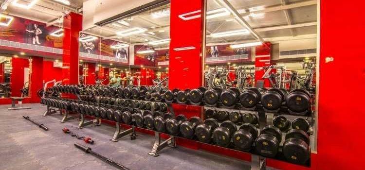 Hammer Fitness-HSR Layout-8235_eexsb4.jpg