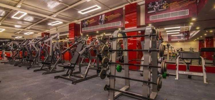 Hammer Fitness-HSR Layout-8237_dpcqxb.jpg