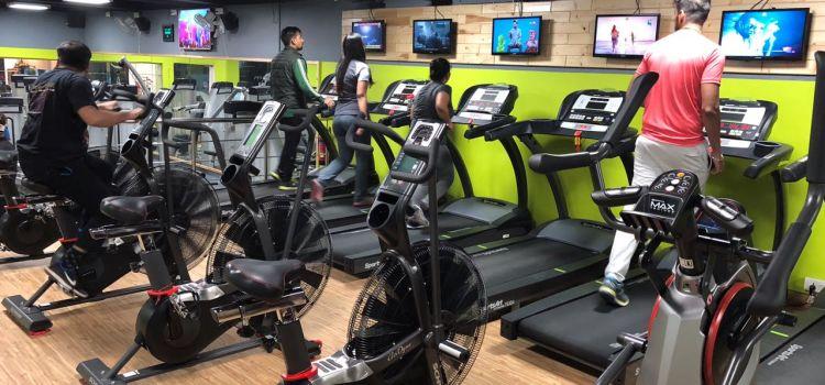 IN Shreddables Gym-East Of Kailash-8892_lwrmod.jpg