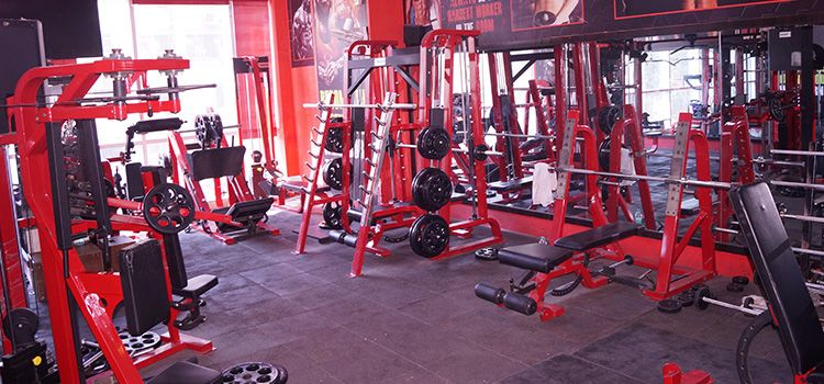 Lifetime Fitness The Gym-Jogeshwari West-10411_ofhltl.jpg