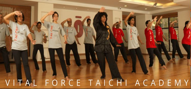 Vital Force TaiChi Academy-Wheelers Road Cooke Town-11045_jdl2aj.jpg