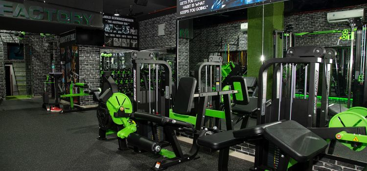 Muscle Factory Gym and Sports-Dahisar East-11607_lbnokd.jpg