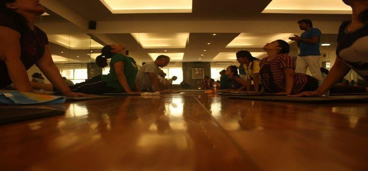 Bharat Thakur Artistic Yoga_696_zdslsm.jpg